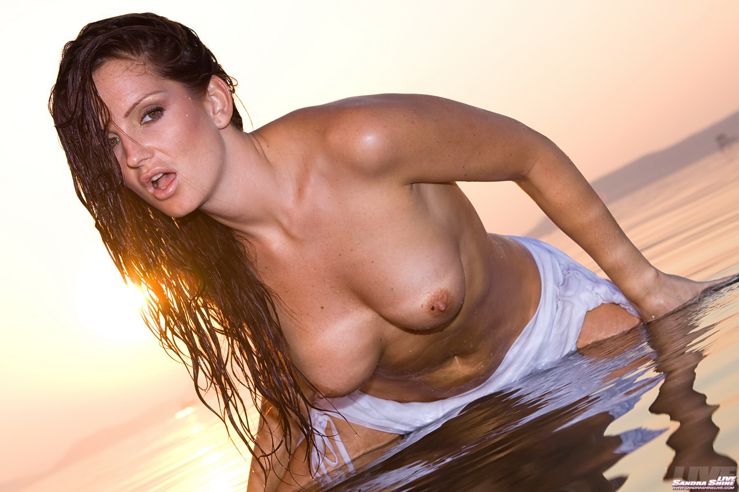 Sandra Shine Wet Shirt
