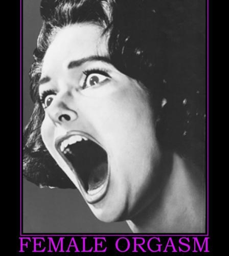 Funny Porn Pic – The female orgasm!