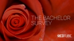 The Bachelor: Who will get the final Rose